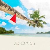 Red Santa hat on palm tree — Stock Photo