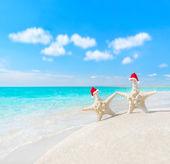 Sea-stars couple in santa hats at sea beach — Stock Photo