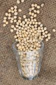 Soy beans  — Stock Photo