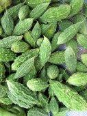 Vegetable bitter melon. — Stock Photo