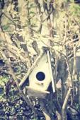 дом птицы — Стоковое фото