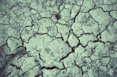 Cracked dry soil — Stock Photo