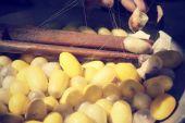 Cocoon silkworm — Stock Photo