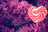 Candy valentines heart with flowers  — ストック写真