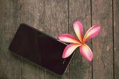 Roze bloem met slimme telefoon — Stockfoto
