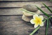 Frangipani with spa stones — Stock Photo