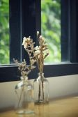 Dried flowers in a vase — Stock Photo