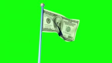 100 dollar flag in greenscreen background — Stock Video