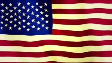 USA flag Full HD — Stock Video