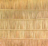 Tropical thatched roof background — Stock Photo