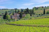 Panzano in Chianti — Stock Photo