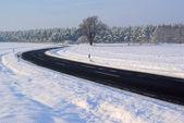 Road in winter  — Stock Photo
