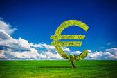 Euro tree — Stock Photo