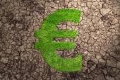 Euro grass — Stock Photo