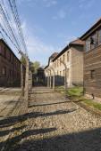 Auschwitz — Stock Photo