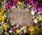 Colorful floral frame — Stock Photo