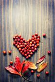 Leaves and berries as a heart — Stock Photo