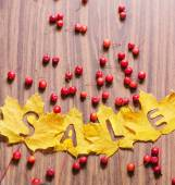 """Leaves with word """"Sale"""" — Foto Stock"""
