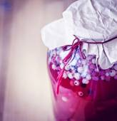 Canned Redcurrant Compote — Stock Photo