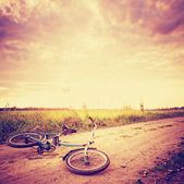 Vintage landscape with Bicycle — Stock Photo