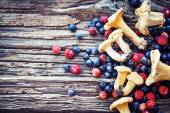 Chanterelles and berries — Stock Photo