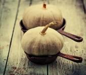 Pádu dýně a jablka — Stock fotografie