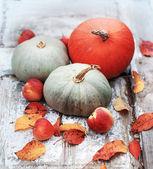 Fall pumpkins and apples — Foto Stock