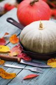 Fall pumpkins and apples — Foto de Stock