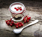 Mixed berries and yogurt with redcurrant — Stock Photo