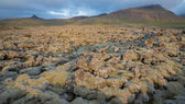 Never-ending Lava fields in Iceland with mountains — Foto Stock