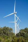 Wind turbines over bush in the countryside — Stock Photo