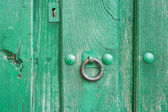 Old run-down green painted wooden door and iron nails — Stock Photo