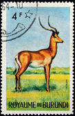 Impala Stamp — Stock Photo