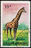Giraffe Stamp — Stock Photo