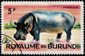 Hippo Stamp — Stock Photo