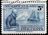 Wilfred Grenfell Stamp — Stock Photo