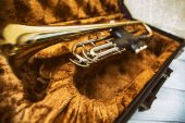 Gold trumpet in case — Stock Photo
