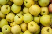Yellow Apple — Stock Photo