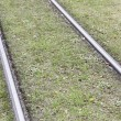 Tram tracks in the grass — Stock Photo #55925233