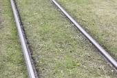 Tram tracks in the grass — Stock Photo