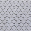 Slate roof in the city — Stock Photo #55941579