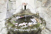 Old stone fountain with flowers — Stockfoto