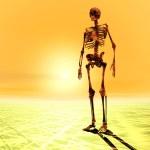 Digital Illustration of a Skeleton — Stock Photo #67647817