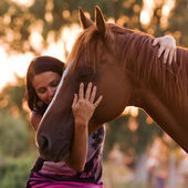 Pretty women is hugging and kissing her handsome horse — Stock Photo