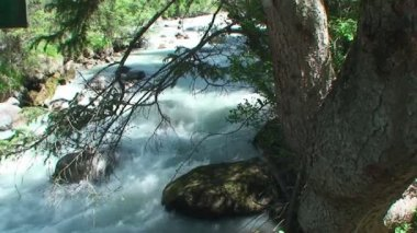 The rough mountain river with pure water — Stock Video