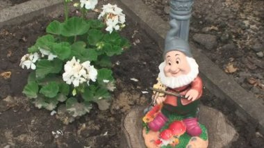 Figure of a dwarf standing near the flower — Stock Video