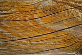 Orange painted rift wood — Stock Photo