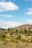 Arid Okanogan Landscape, Canada — Stock Photo
