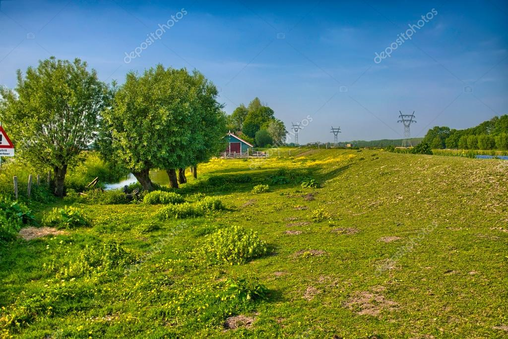 Beautiful Farm Landscape With Trees And Grass Fields