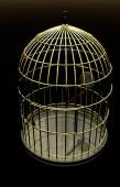 Golden Birdcage — Stock Photo